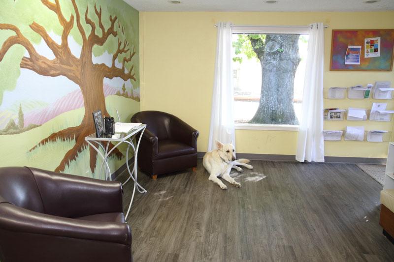 inside Avodah Therapy